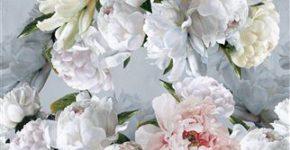 花柄プリント